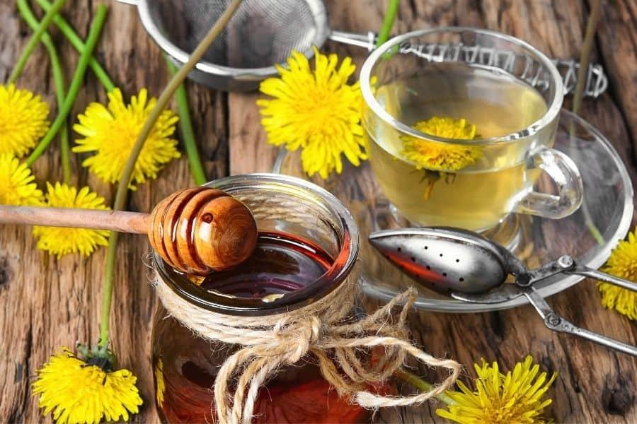Washing Your Hair In Dandelion Tea