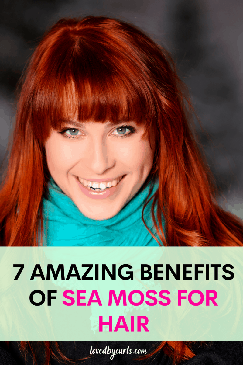 sea moss for hair