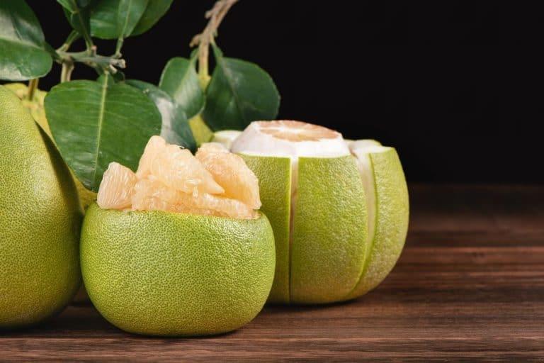 pomelo-fruit