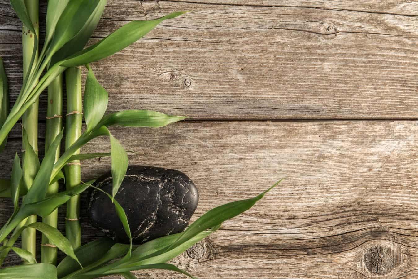 Does Bamboo Tea Work for Hair Growth